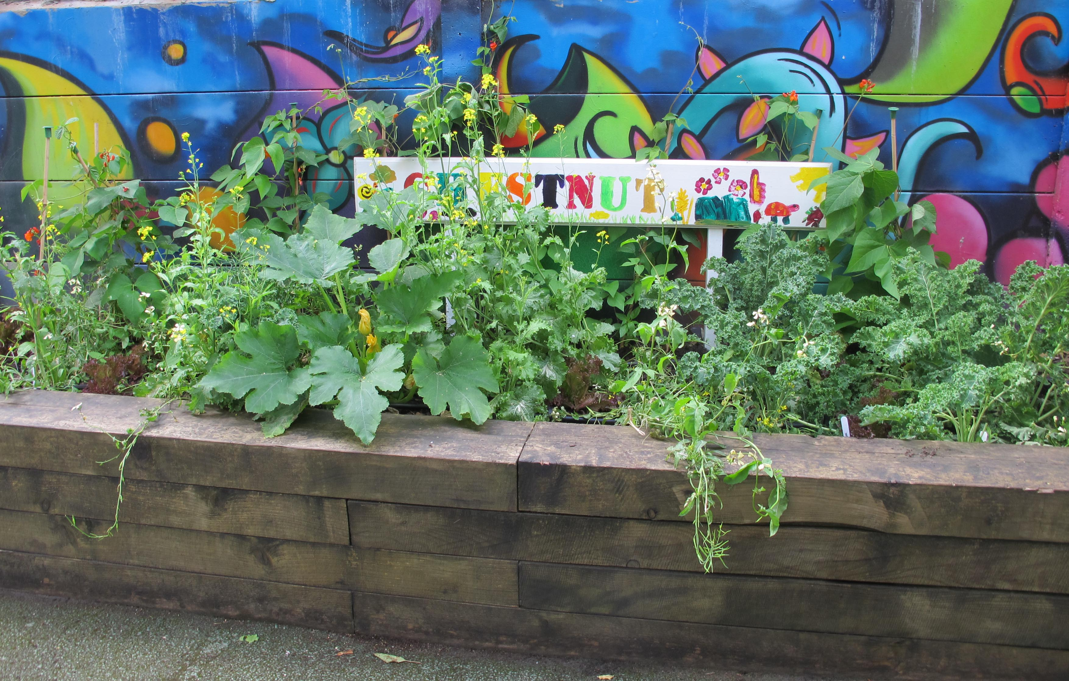 Orchard Primary School Grow Your Own Playground